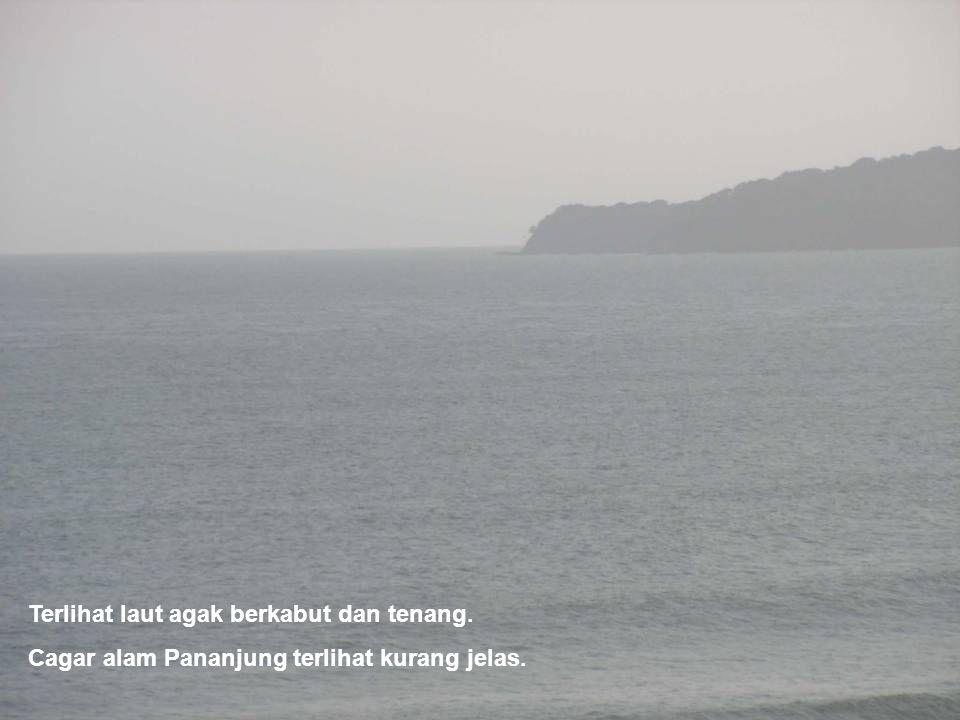 Terlihat laut agak berkabut dan tenang. Cagar alam Pananjung terlihat kurang jelas.