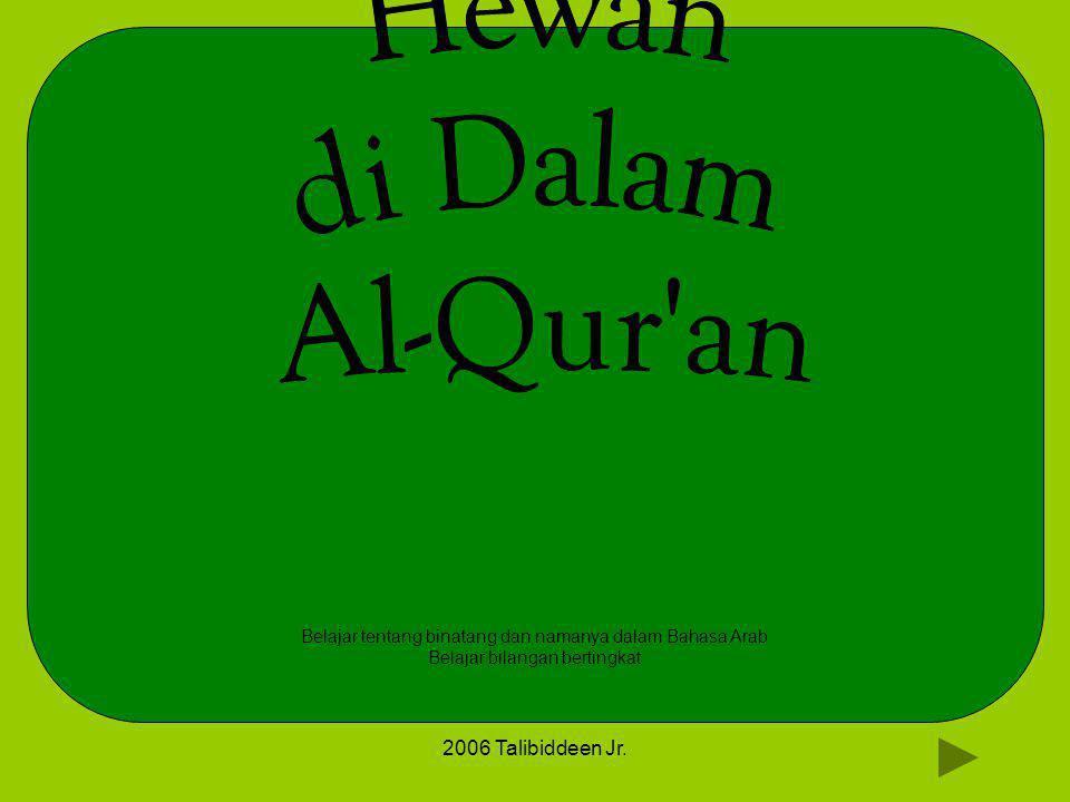 2006 Talibiddeen Jr. Belajar tentang binatang dan namanya dalam Bahasa Arab Belajar bilangan bertingkat