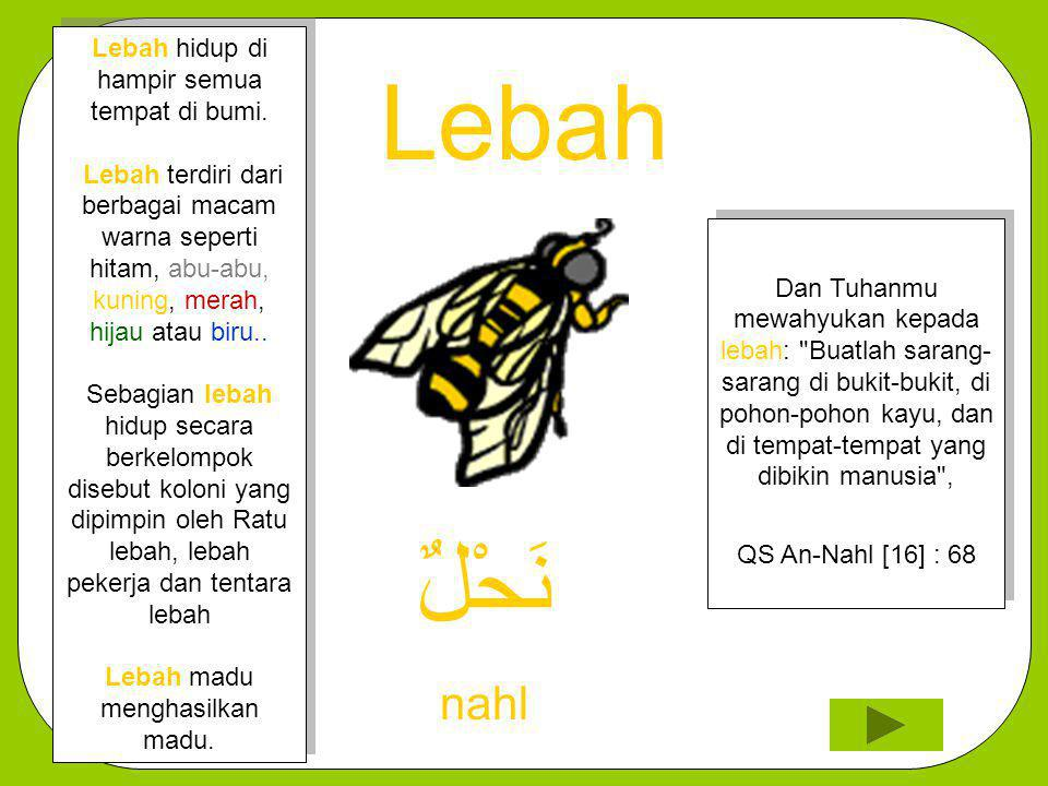Lebah نَحْلٌ nahl Dan Tuhanmu mewahyukan kepada lebah: