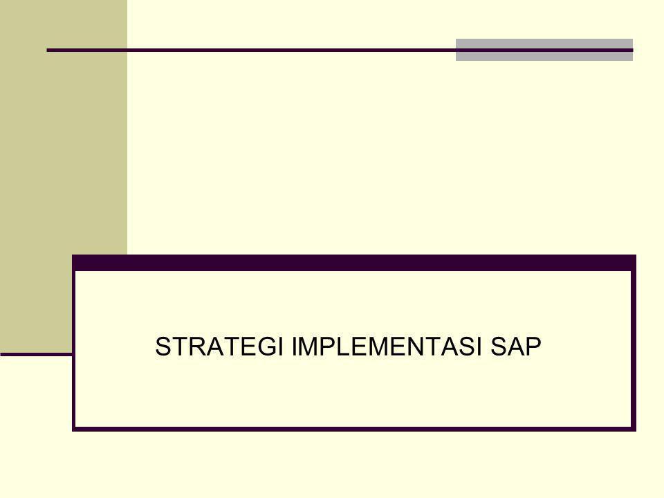 STRATEGI IMPLEMENTASI SAP