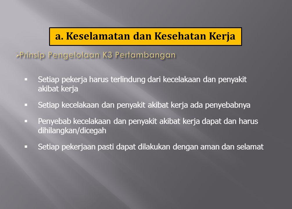 14 Antara lain:  KEPALA PELAKSANA INSPEKSI TAMBANG ( KAPIT )  PELAKSANA INSPEKSI TAMBANG/INSPEKTUR TAMBANG ( I T )  KEPALA TEKNIK TAMBANG (KTT)  PENGAWAS TEKNIS DAN PENGAWAS OPERATIONAL  ORGANISASI K3  LAPORAN K3  Elemen Pengawasan K3