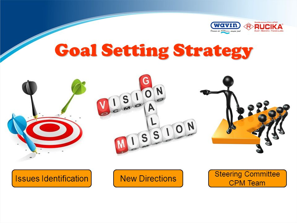 Goal Setting Strategy Issues IdentificationNew Directions Steering Committee CPM Team