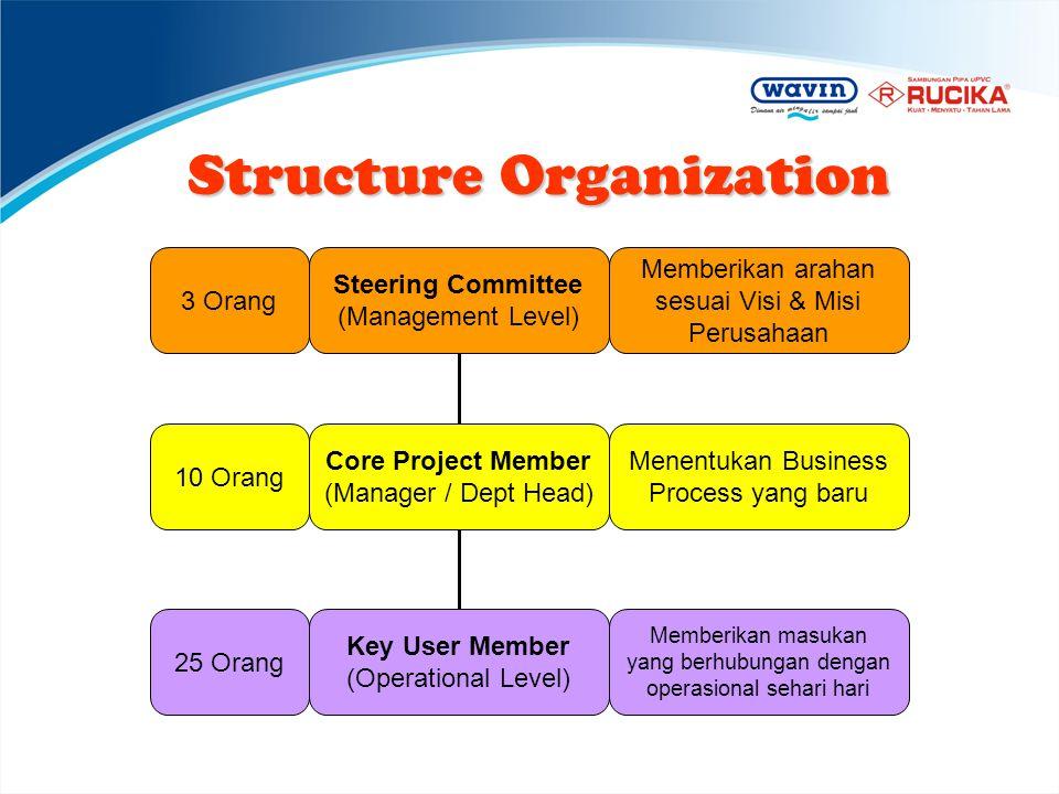 Structure Organization Steering Committee (Management Level) Memberikan arahan sesuai Visi & Misi Perusahaan 3 Orang Core Project Member (Manager / De