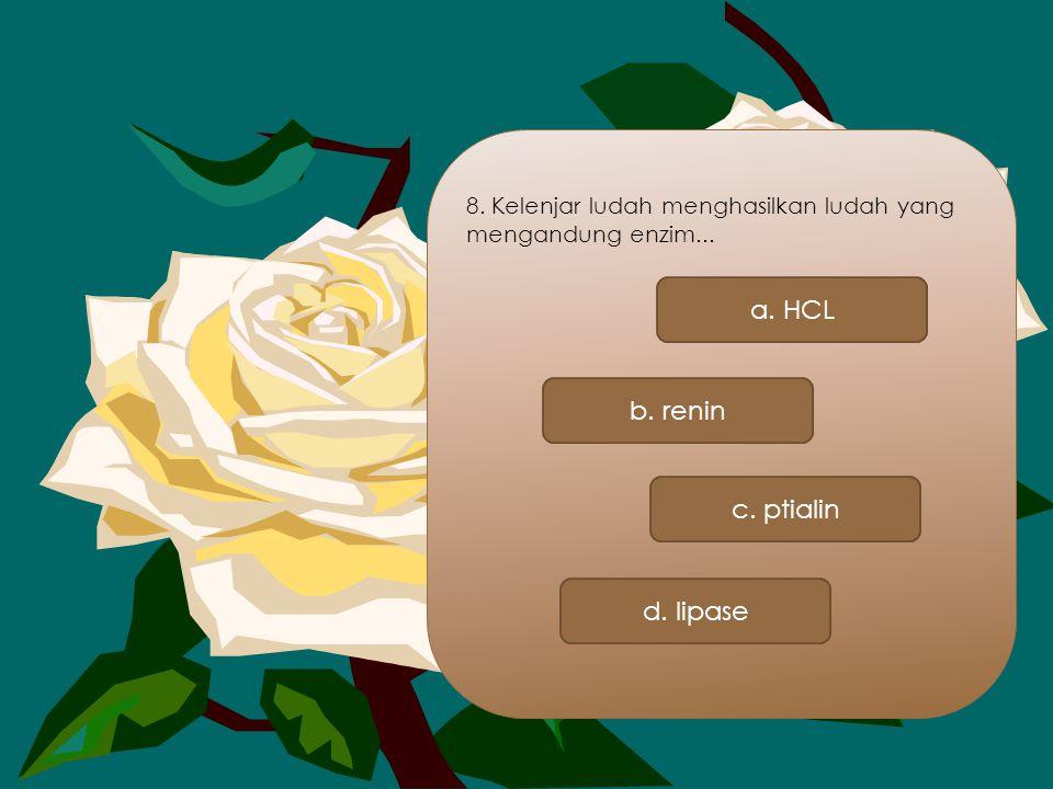 8. Kelenjar ludah menghasilkan ludah yang mengandung enzim... a. HCL b. renin c. ptialin d. lipase
