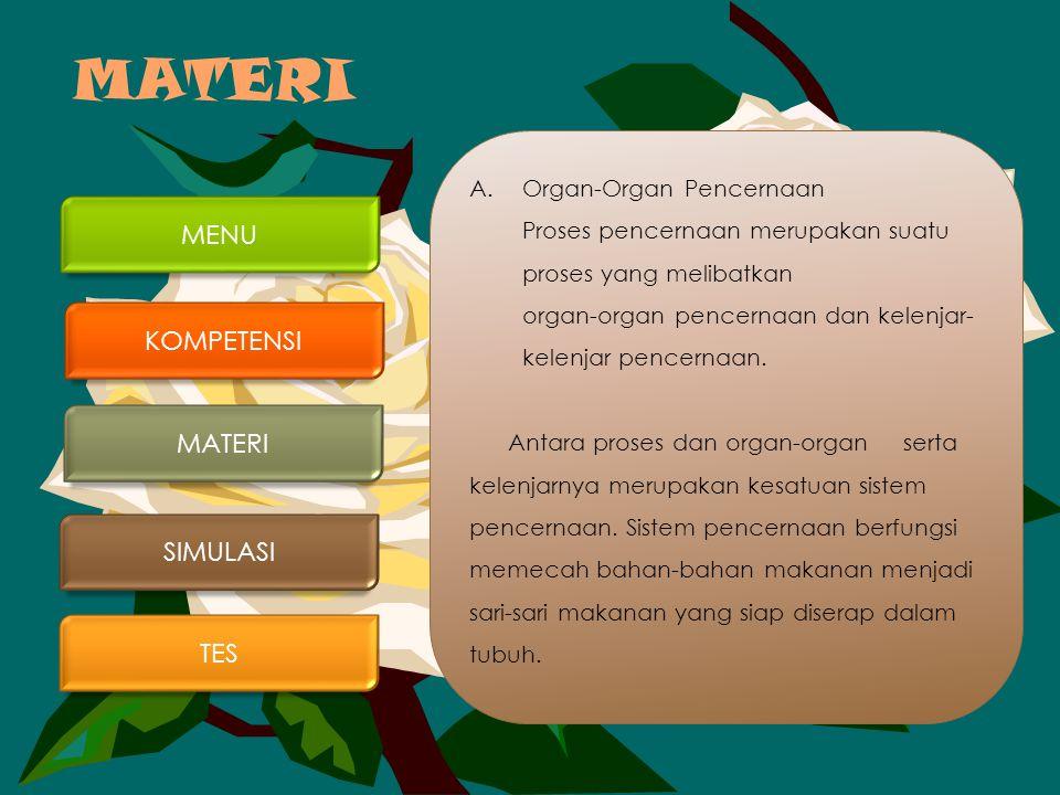 MATERI A.Organ-Organ Pencernaan Proses pencernaan merupakan suatu proses yang melibatkan organ-organ pencernaan dan kelenjar- kelenjar pencernaan.