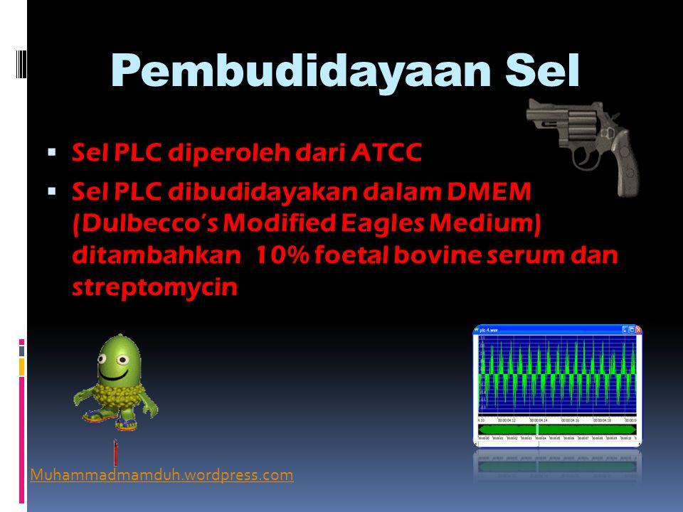 Pembudidayaan Sel  Sel PLC diperoleh dari ATCC  Sel PLC dibudidayakan dalam DMEM (Dulbecco's Modified Eagles Medium) ditambahkan 10% foetal bovine serum dan streptomycin Muhammadmamduh.wordpress.com