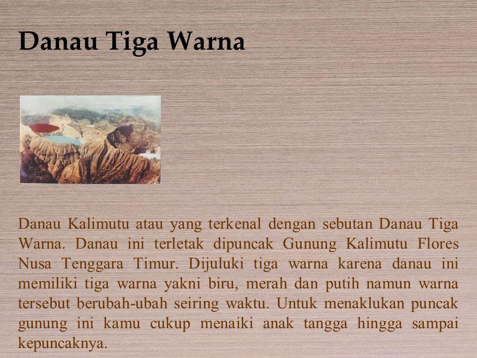 Danau Tiga Warna Danau Kalimutu atau yang terkenal dengan sebutan Danau Tiga Warna. Danau ini terletak dipuncak Gunung Kalimutu Flores Nusa Tenggara T