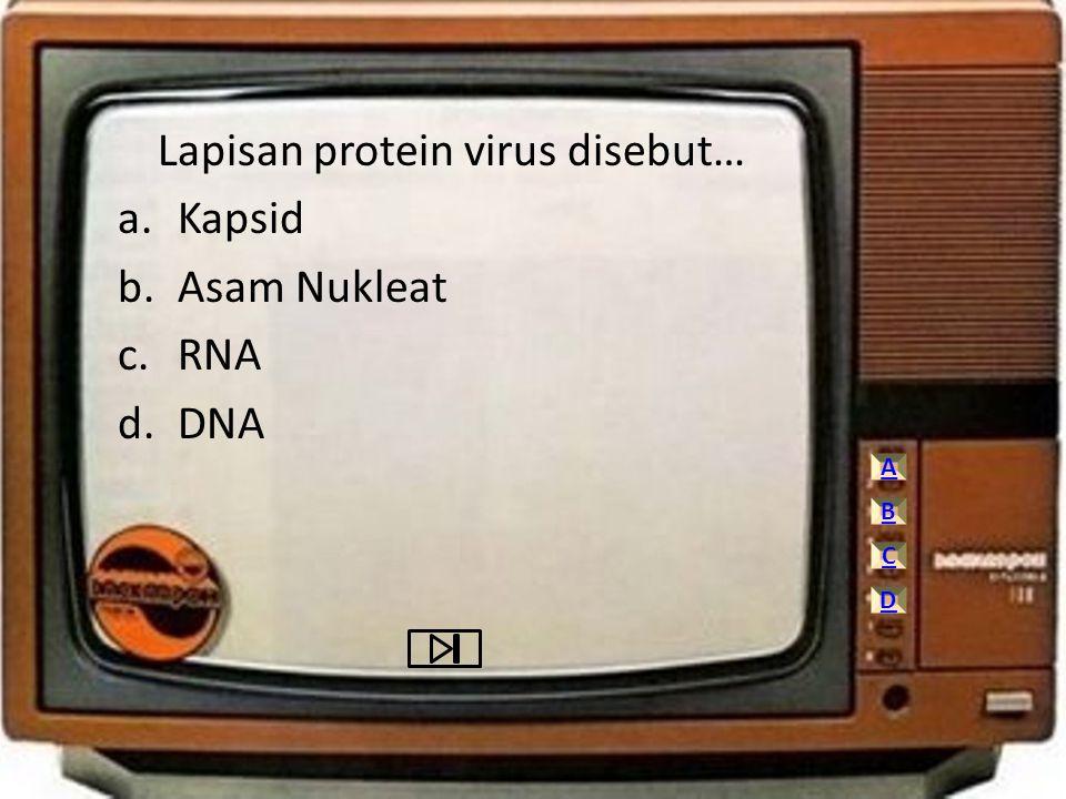 Lapisan protein virus disebut… a.Kapsid b.Asam Nukleat c.RNA d.DNA A C D B