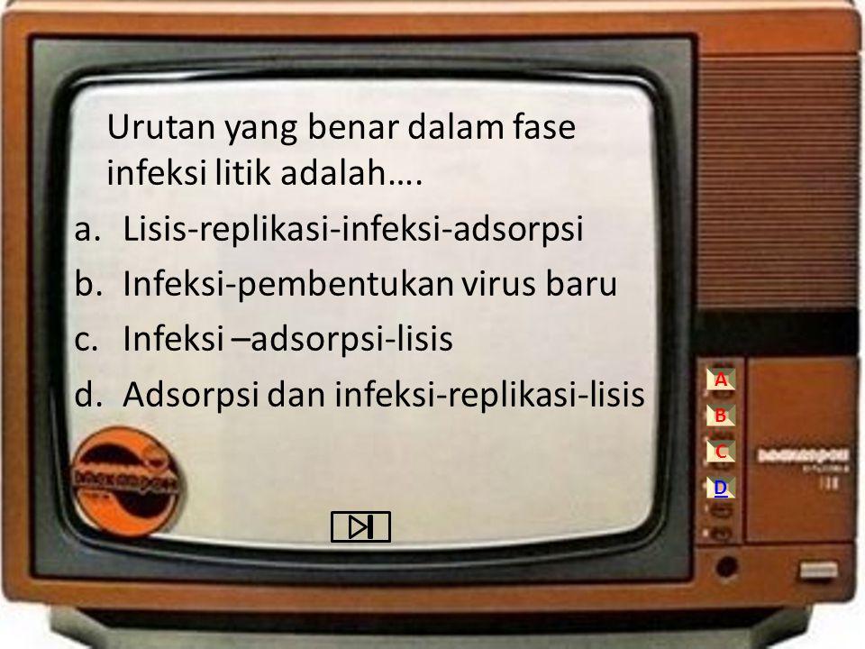 Urutan yang benar dalam fase infeksi litik adalah…. a.Lisis-replikasi-infeksi-adsorpsi b.Infeksi-pembentukan virus baru c.Infeksi –adsorpsi-lisis d.Ad