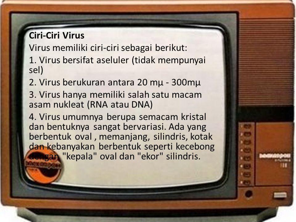 • Ciri-Ciri Virus • Virus memiliki ciri-ciri sebagai berikut: • 1. Virus bersifat aseluler (tidak mempunyai sel) • 2. Virus berukuran antara 20 mµ - 3