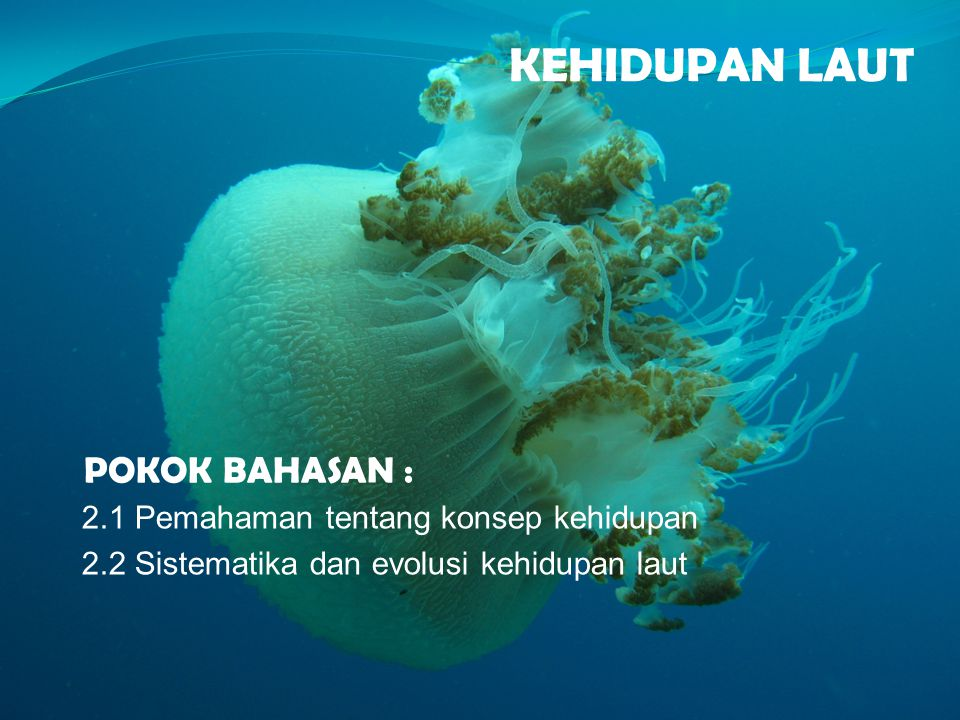 KEHIDUPAN LAUT POKOK BAHASAN : 2.1 Pemahaman tentang konsep kehidupan 2.2 Sistematika dan evolusi kehidupan laut