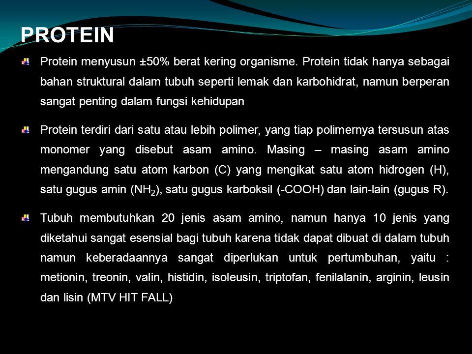 PROTEIN Protein menyusun ±50% berat kering organisme. Protein tidak hanya sebagai bahan struktural dalam tubuh seperti lemak dan karbohidrat, namun be