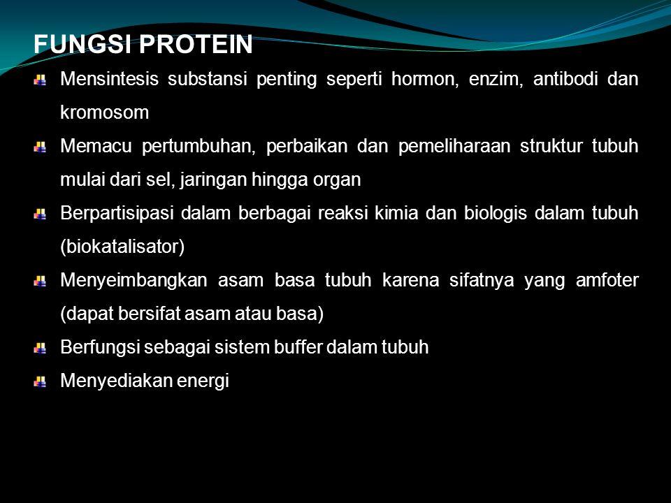 FUNGSI PROTEIN Mensintesis substansi penting seperti hormon, enzim, antibodi dan kromosom Memacu pertumbuhan, perbaikan dan pemeliharaan struktur tubuh mulai dari sel, jaringan hingga organ Berpartisipasi dalam berbagai reaksi kimia dan biologis dalam tubuh (biokatalisator) Menyeimbangkan asam basa tubuh karena sifatnya yang amfoter (dapat bersifat asam atau basa) Berfungsi sebagai sistem buffer dalam tubuh Menyediakan energi
