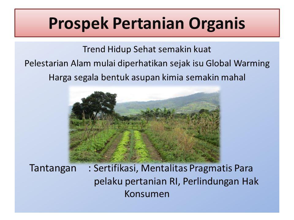 Prospek Pertanian Organis Trend Hidup Sehat semakin kuat Pelestarian Alam mulai diperhatikan sejak isu Global Warming Harga segala bentuk asupan kimia