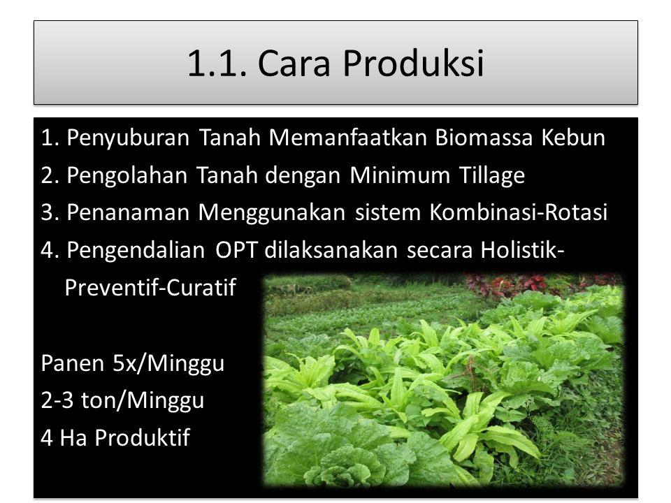 1.1. Cara Produksi 1. Penyuburan Tanah Memanfaatkan Biomassa Kebun 2. Pengolahan Tanah dengan Minimum Tillage 3. Penanaman Menggunakan sistem Kombinas
