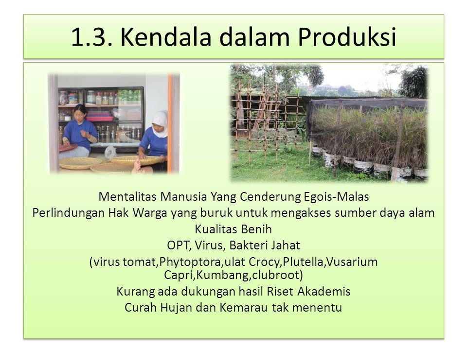 2.Pemasaran Penetapan Harga mempertimbangkan 1. Input: benih,pupuk,Biophyto Patronum 2.
