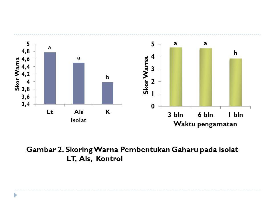 Gambar 2. Skoring Warna Pembentukan Gaharu pada isolat LT, Als, Kontrol