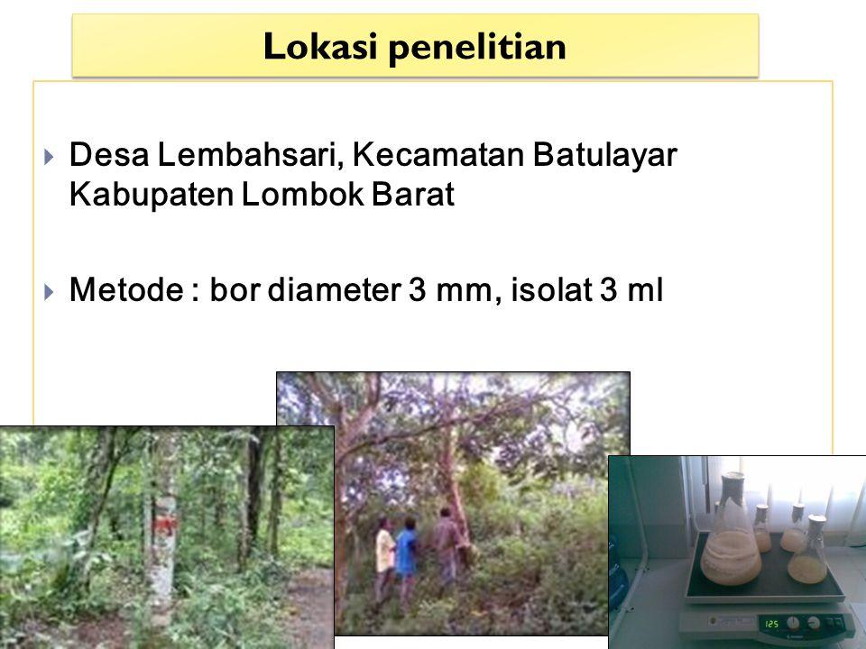 Bahan : Pohon Gyrinops versteegii, alkohol 70%, isolat cair fungi pembentuk gaharu yang berasal dari 2 lokasi di NTB (LT dan ALS), bensin, dll.