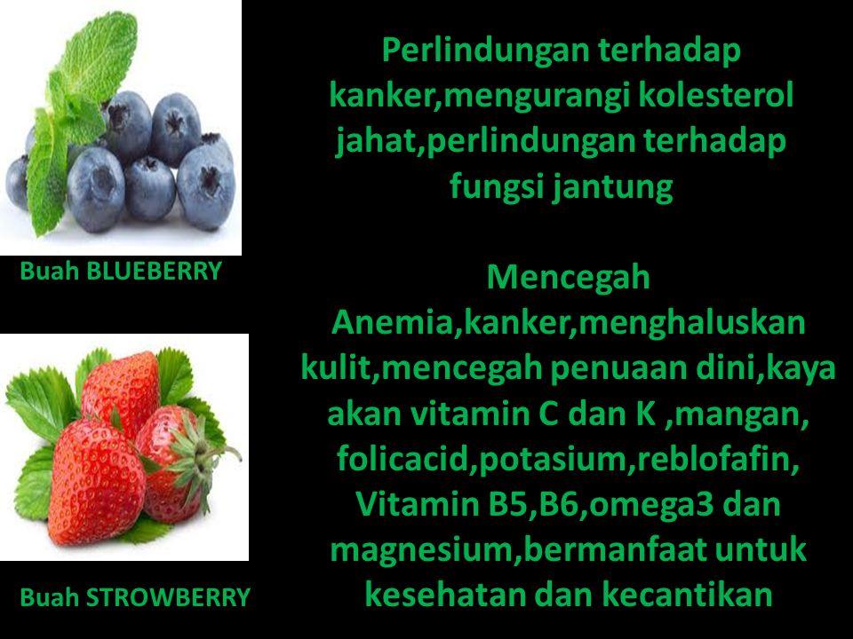 Buah KIWI Melindungi DNA dari radikal bebas,membantu mencegah kanker usus,baik bagi system pencernaan Buah naga Menghambat penuaan dini,mencegah kanker,meningkatkan kekebalan tubuh,menurunkan kadar kolesterol,memperkuat tulang ( osteoporosis ),mencegah diabetes melitus,merawat kesehatan mata,jantung dan kesehatan kulit