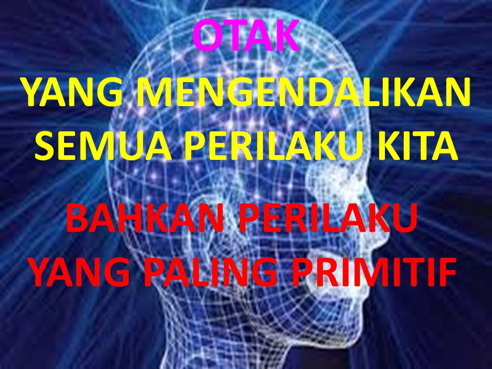 Mengandung satu triliun neuron atau sel saraf Otak yang mengatur semua fungsi tubuh kita