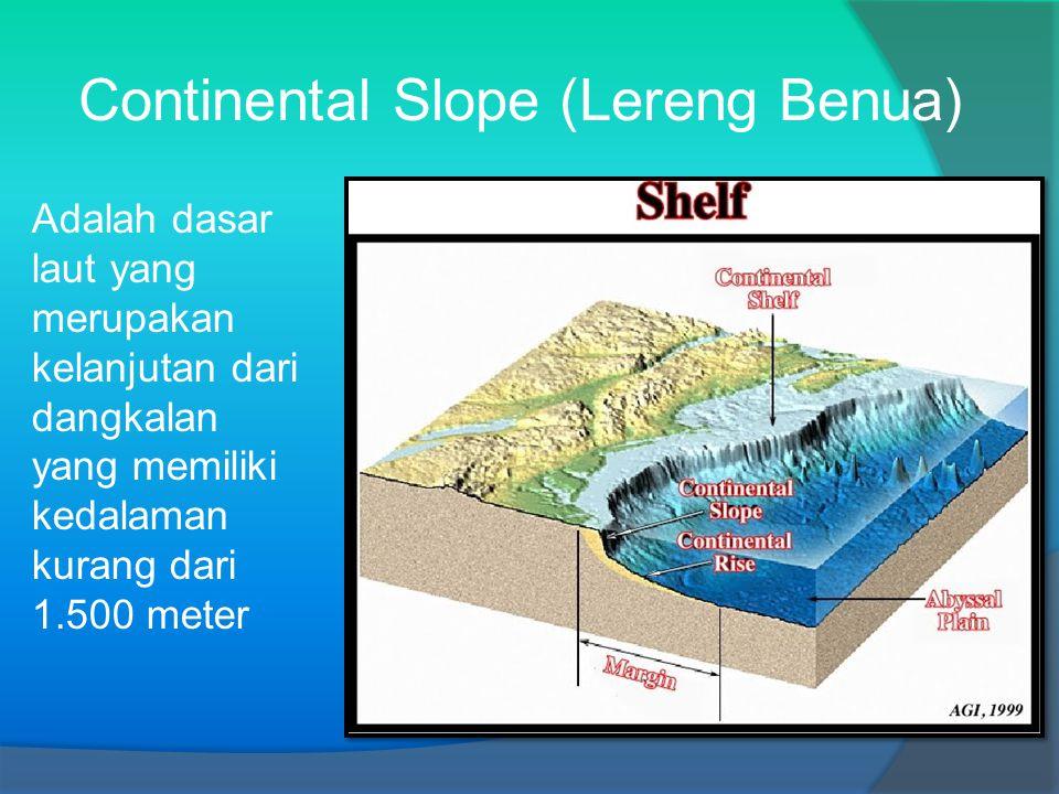 Continental Slope (Lereng Benua) Adalah dasar laut yang merupakan kelanjutan dari dangkalan yang memiliki kedalaman kurang dari 1.500 meter