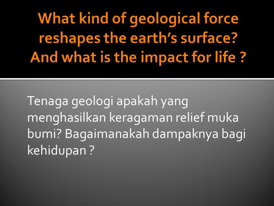 Tenaga geologi apakah yang menghasilkan keragaman relief muka bumi? Bagaimanakah dampaknya bagi kehidupan ?