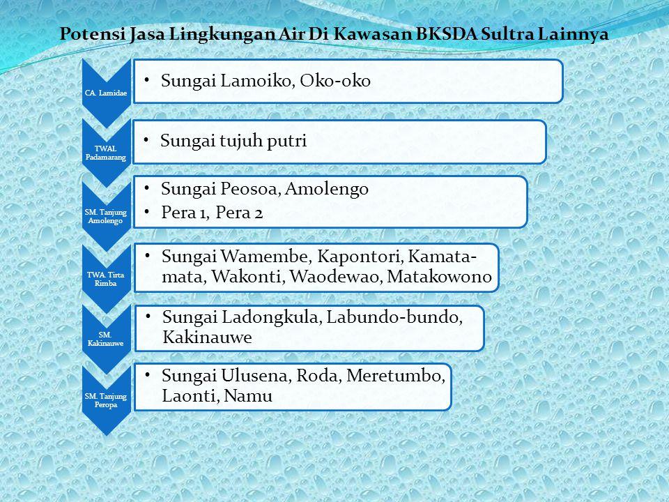 Potensi Jasa Lingkungan Air Di Kawasan BKSDA Sultra Lainnya CA. Lamidae •Sungai Lamoiko, Oko-oko TWAL Padamarang •Sungai tujuh putri SM. Tanjung Amole