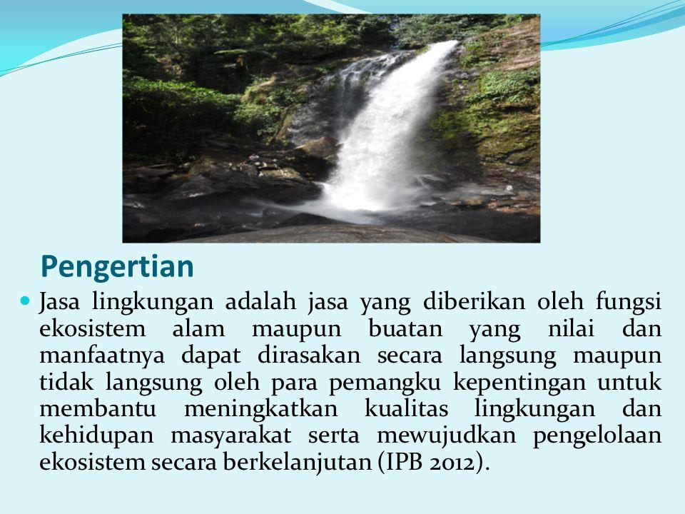Potensi ekonomi di Kawasan Konservasi di wilayah kerja BKSDA Sulawesi Tenggara dalam bentuk jasa lingkungan yang belum dioptimalkan pemanfaatannya antara lain : • Pemanfataan hutan konservasi sebagai serapan dan penyimpan karbon.