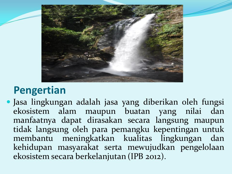 Jasa lingkungan dapat berupa: a.Jasa wisata alam b.Jasa perlindungan tata air (hidrologi) c.Kesuburan tanah d.Pengendali erosi dan banjir e.Keindahan dan keunikan alam f.Penyerapan dan penyimpanan karbon (carbon stock) Yang banyak dikenal saat ini ada 4 jenis jasa lingkungan: 1.Jasa lingkungan tata air 2.Jasa lingkungan keanekaragaman hayati 3.Jasa lingkungan penyerapan karbon, dan 4.Jasa lingkungan keindahan lanskap