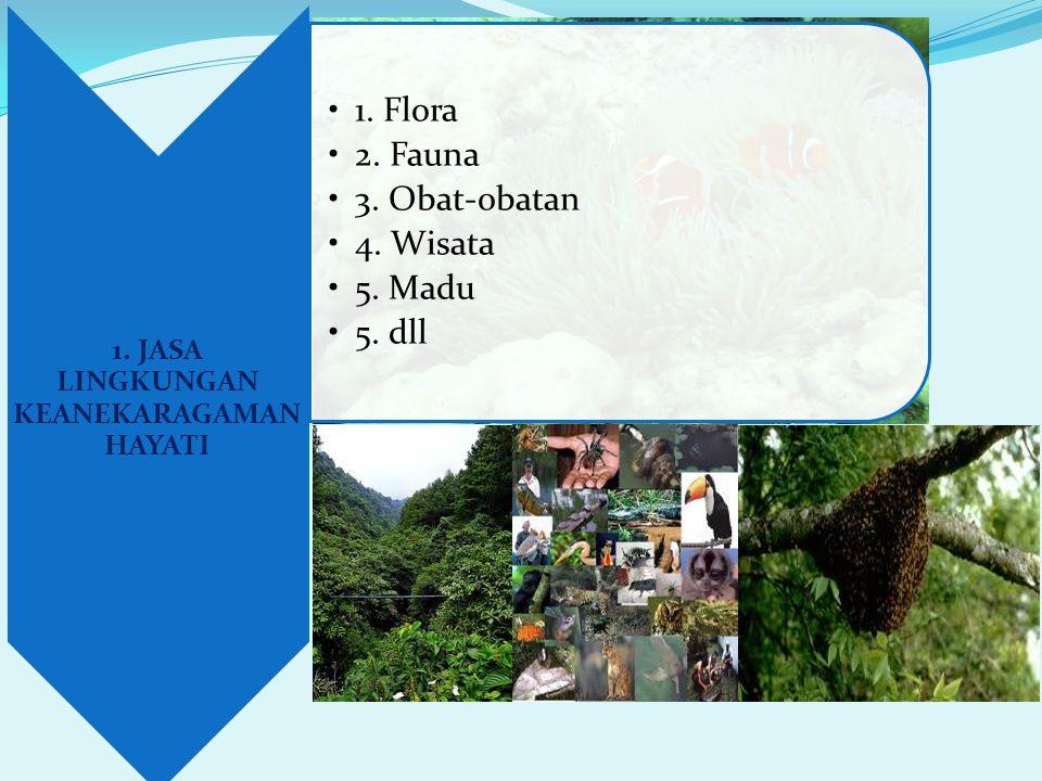 1. JASA LINGKUNGAN KEANEKARAGAMAN HAYATI •1. Flora •2. Fauna •3. Obat-obatan •4. Wisata •5. Madu •5. dll