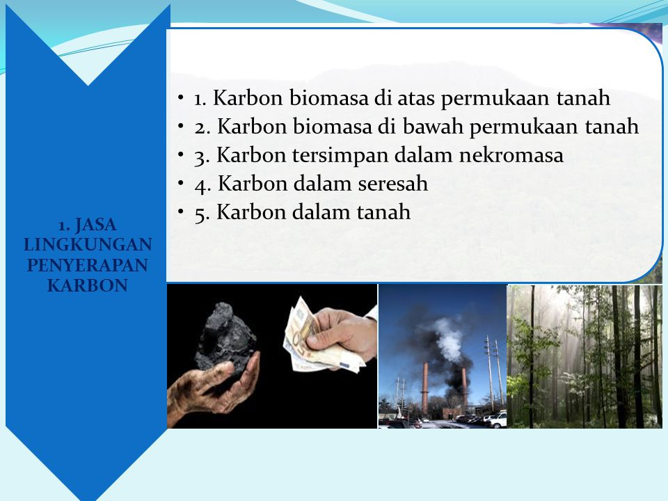 1. JASA LINGKUNGAN PENYERAPAN KARBON •1. Karbon biomasa di atas permukaan tanah •2. Karbon biomasa di bawah permukaan tanah •3. Karbon tersimpan dalam
