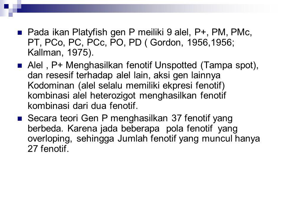  Pada ikan Platyfish gen P meiliki 9 alel, P+, PM, PMc, PT, PCo, PC, PCc, PO, PD ( Gordon, 1956,1956; Kallman, 1975).