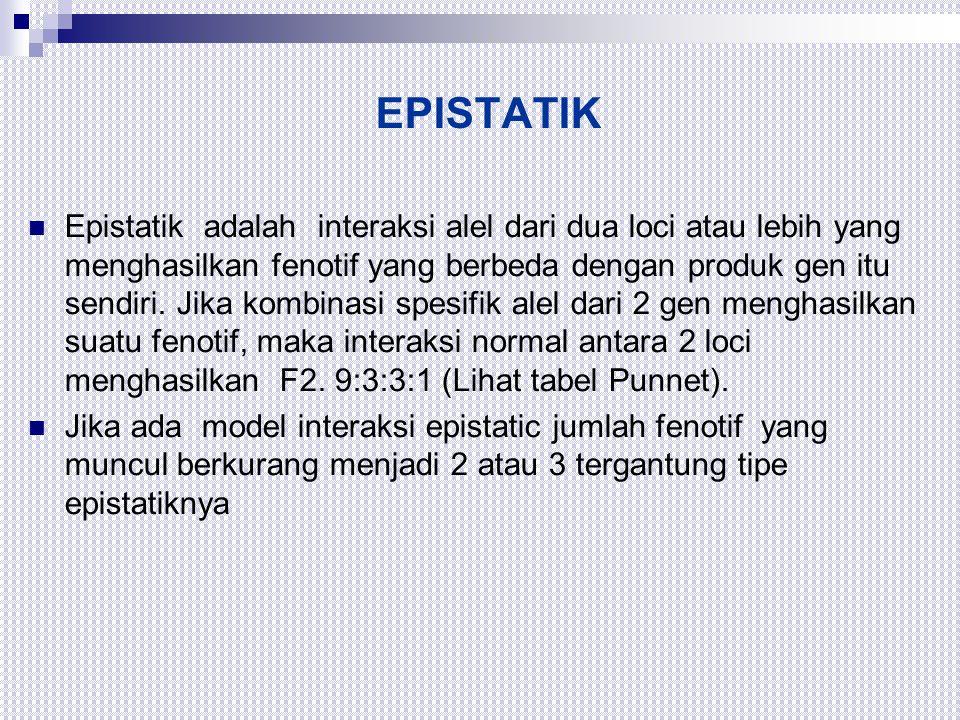 EPISTATIK  Epistatik adalah interaksi alel dari dua loci atau lebih yang menghasilkan fenotif yang berbeda dengan produk gen itu sendiri. Jika kombin