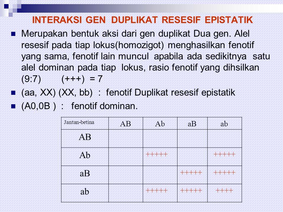 INTERAKSI DOMINAN DAN RESESIF EPISTATIK  Interaksi dominan dan resesif terjadi apabila ada gen dominan pada gen yg lainnya, homozigot/ heterozigot alel dominan pada gen dominan menghaslkan fenotif lokus dominan..