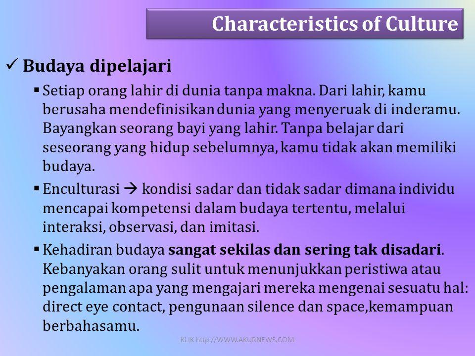  Budaya dipelajari  Setiap orang lahir di dunia tanpa makna.