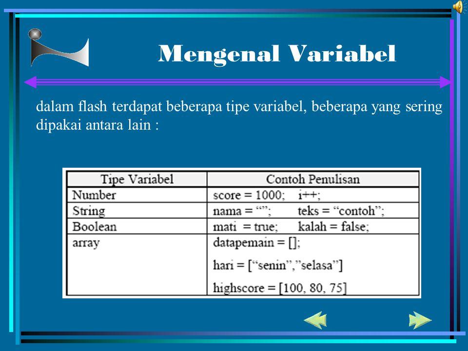 Mengenal Variabel dalam flash terdapat beberapa tipe variabel, beberapa yang sering dipakai antara lain :