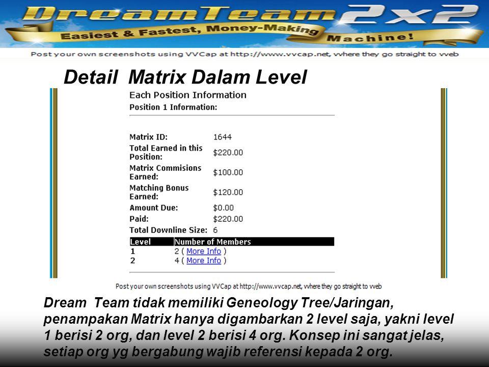 Detail Matrix Dalam Level Dream Team tidak memiliki Geneology Tree/Jaringan, penampakan Matrix hanya digambarkan 2 level saja, yakni level 1 berisi 2