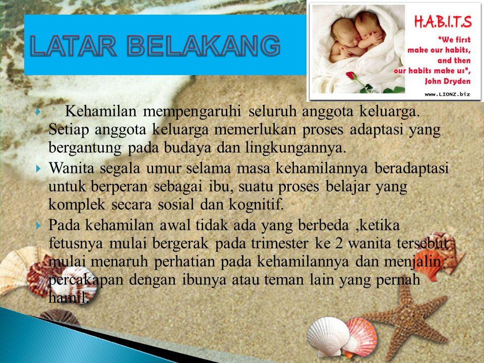  Kehamilan mempengaruhi seluruh anggota keluarga.