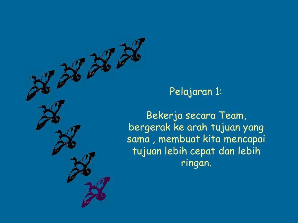 Pelajaran 1: Bekerja secara Team, bergerak ke arah tujuan yang sama, membuat kita mencapai tujuan lebih cepat dan lebih ringan.