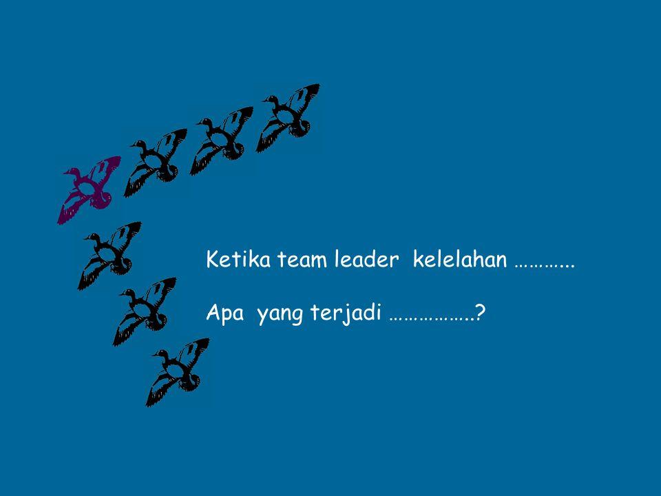 Ketika team leader kelelahan ………... Apa yang terjadi ……………..?
