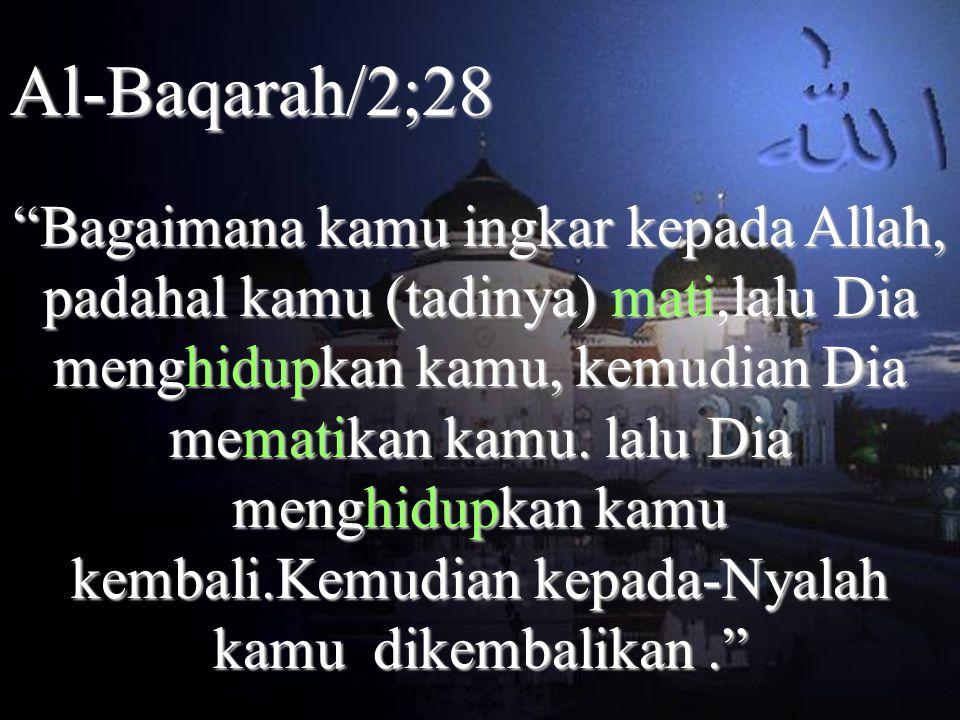 Al-Baqarah/2;28 Bagaimana kamu ingkar kepada Allah, padahal kamu (tadinya) mati,lalu Dia menghidupkan kamu, kemudian Dia mematikan kamu.