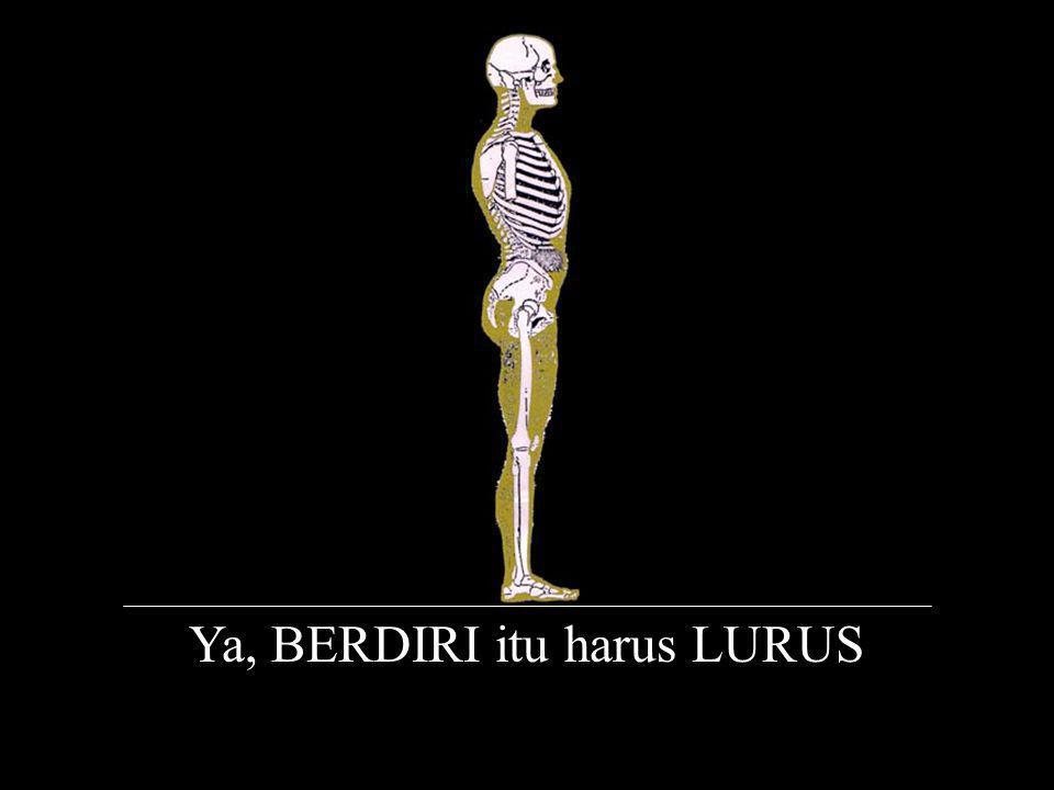 Ya, BERDIRI itu harus LURUS