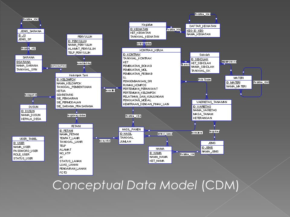 Conceptual Data Model (CDM)