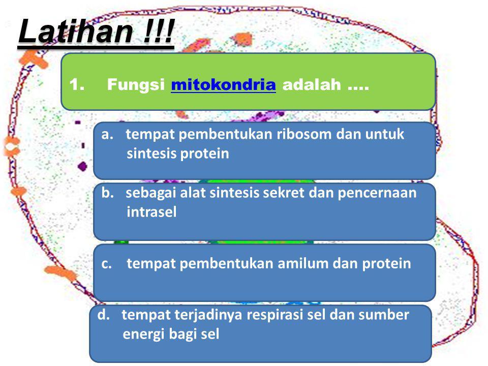 1. Fungsi mitokondria adalah....mitokondria a.tempat pembentukan ribosom dan untuktempat pembentukan ribosom dan untuk sintesis protein b.sebagai alat