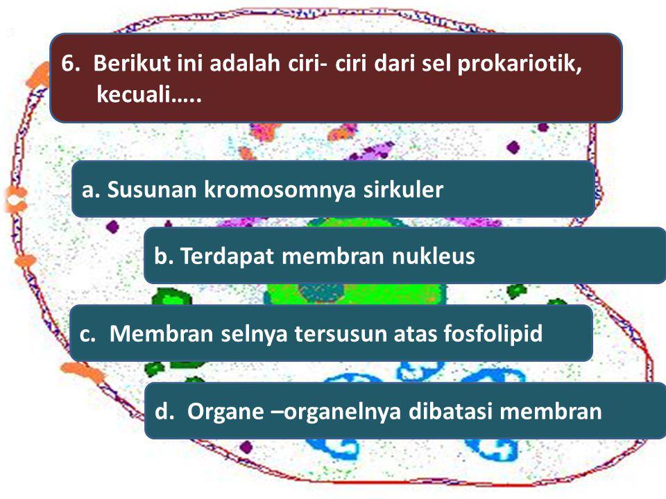 6. Berikut ini adalah ciri- ciri dari sel prokariotik, kecuali….. a. Susunan kromosomnya sirkuler b. Terdapat membran nukleus c. Membran selnya tersus
