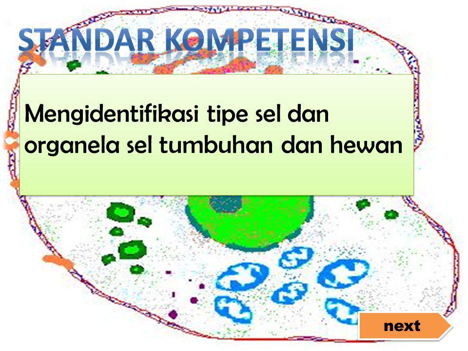 next Mengidentifikasi tipe sel dan organela sel tumbuhan dan hewan