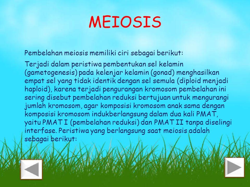 MEIOSIS Pembelahan meiosis memiliki ciri sebagai berikut: Terjadi dalam peristiwa pembentukan sel kelamin (gametogenesis) pada kelenjar kelamin (gonad) menghasilkan empat sel yang tidak identik dengan sel semula (diploid menjadi haploid), karena terjadi pengurangan kromosom pembelahan ini sering disebut pembelahan reduksi bertujuan untuk mengurangi jumlah kromosom, agar komposisi kromosom anak sama dengan komposisi kromosom indukberlangsung dalam dua kali PMAT, yaitu PMAT I (pembelahan reduksi) dan PMAT II tanpa diselingi interfase.
