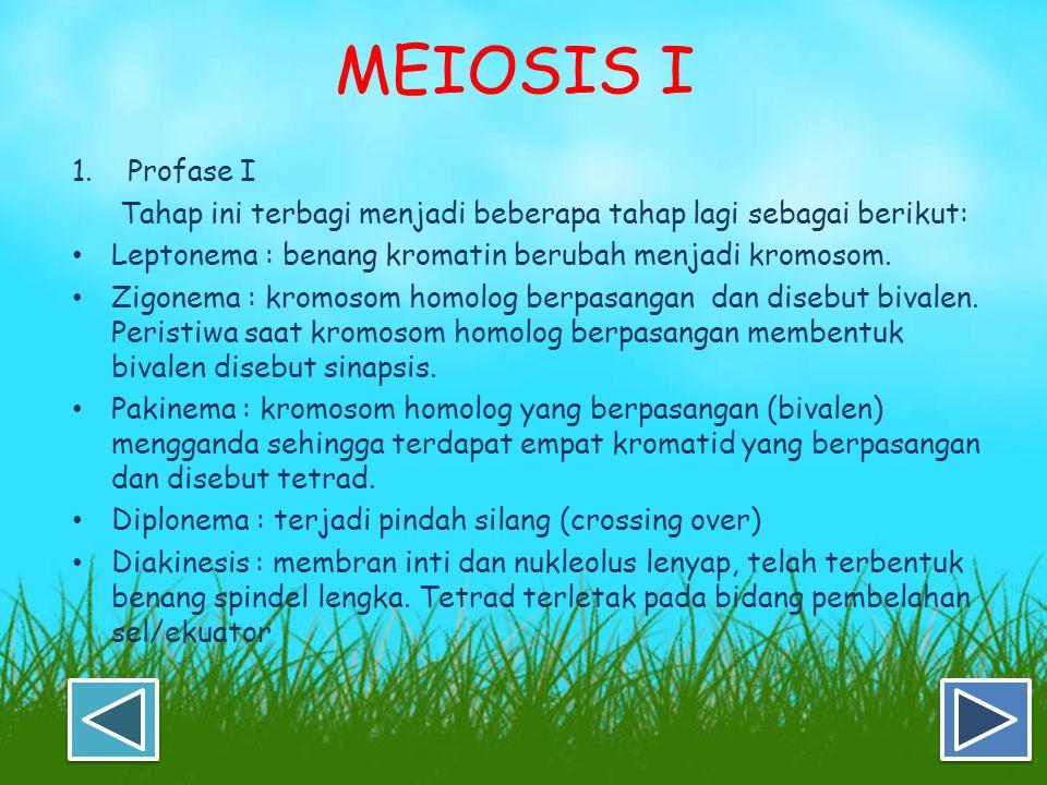 MEIOSIS Pembelahan meiosis memiliki ciri sebagai berikut: Terjadi dalam peristiwa pembentukan sel kelamin (gametogenesis) pada kelenjar kelamin (gonad