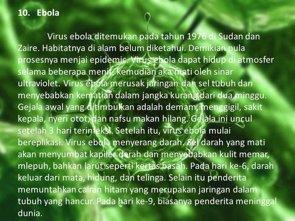 10. Ebola Virus ebola ditemukan pada tahun 1976 di Sudan dan Zaire. Habitatnya di alam belum diketahui. Demikian pula prosesnya menjai epidemic. Virus
