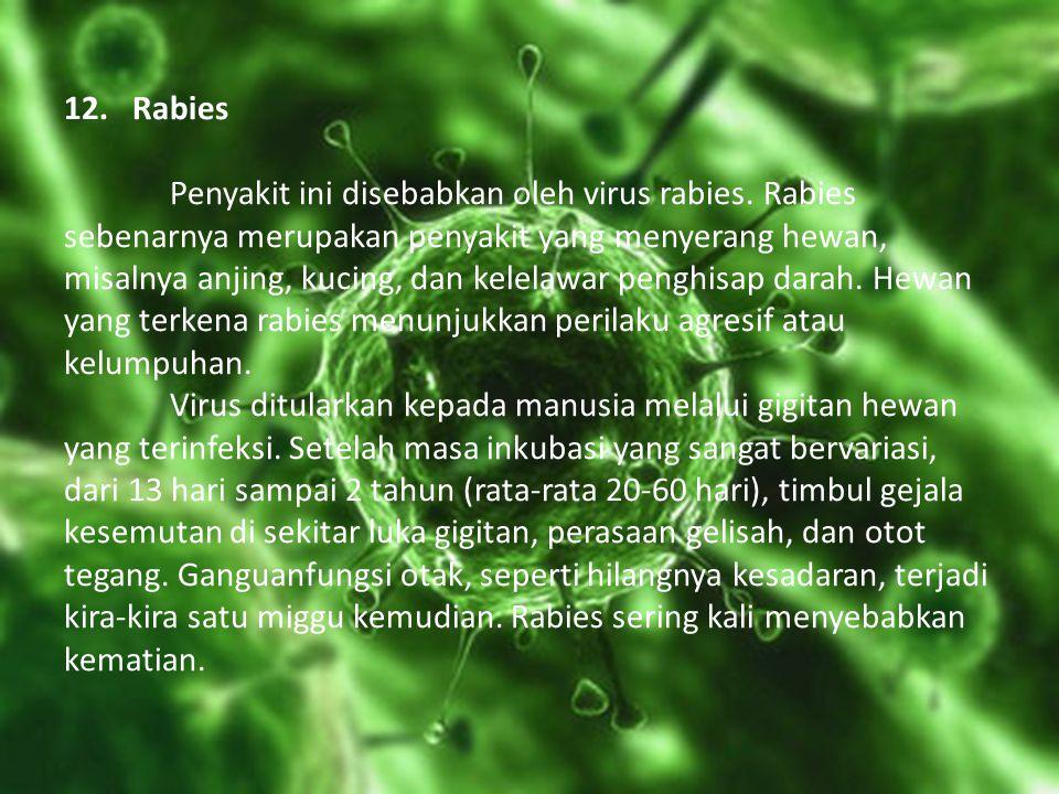 12. Rabies Penyakit ini disebabkan oleh virus rabies. Rabies sebenarnya merupakan penyakit yang menyerang hewan, misalnya anjing, kucing, dan kelelawa